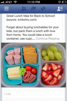 Homemade lunchables and I would take this to work!! :)   winkchic.com.