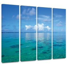 ArtWall George Zucconi's Lagoon & Reef 4 Piece Gallery Wrapped Set