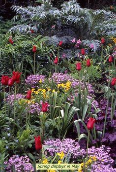 The Hillside Garden, Dorothy Clive Garden.