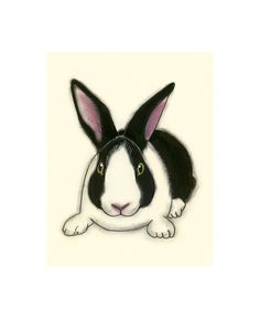 Dutch Rabbit art print  Arnold   4 X 6 print by matouenpeluche