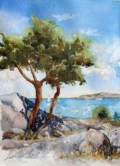 It is Monday and time for me to share a new watercolor. This time I have a scene from Källö Knippla - one of our favorite islands in the Gothenburg archipelago. I use Winsor Newtons Professional wate Watercolor Painting Techniques, Watercolor Landscape Paintings, Watercolor Pictures, Watercolor Trees, Landscape Drawings, Watercolor Artwork, Watercolor Sketch, Landscape Art, Guache