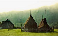 Haystacks Romania, Europe, Painting, Beautiful, Art, Art Background, Painting Art, Kunst, Paintings