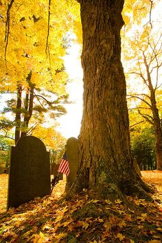 Cemetery in the autumn, Massachusetts