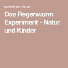 Das Regenwurm Experiment - Natur und Kinder