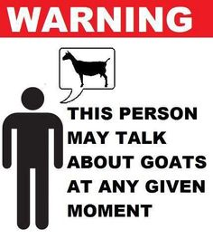That is so true. If anyone gives me a notion they want to talk about goats...I take it and go!