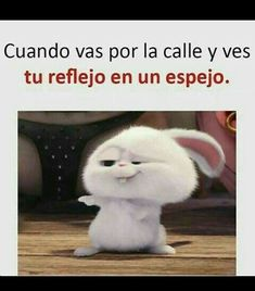 Funny Relatable Memes, Funny Posts, Cute Bunny Cartoon, Pinterest Memes, Great Memes, Spanish Humor, Marketing Software, Disney Memes, Comedy Central