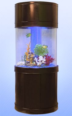 tons of amazing and unique fish tank/aquarium ideas!