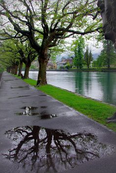Rainy day in Switzerland ☔️🇨🇭 Rain Photography, Landscape Photography, Rainy Day Photography, White Photography, Beautiful World, Beautiful Images, Rain Wallpapers, Phone Wallpapers, I Love Rain