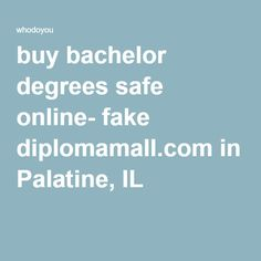 The common features that online fake degrees are relative to the ...