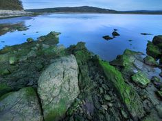 Arnside & Silverdale, Area of Outstanding Natural Beauty