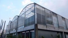 FR, Mulhouse, Social Housing. Architect Lacaton & Vassal, 2005.