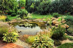 bassin de jardin avec des nénuphars et des cailloux entouré de fleurs, de conifères et de roches