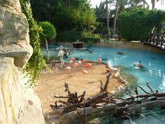 Een leuk uitstapje? Bezoek het zeedierenpark Mundo Mar!