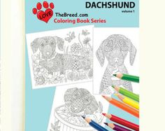 Dachshund Dog Coloring Book for Adults by Love The Breed Volume 1