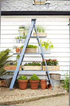 Turn a wooden ladder into a space-saving stand for flowers, veggies, and herbs with just a few boards and a coat of paint. Click through for more small garden ideas and backyard decor.