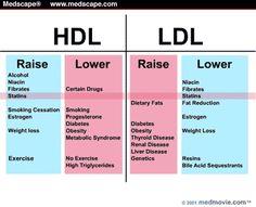 Raise HDL - Lower LDL