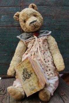 Old bear.