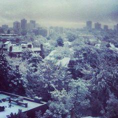 Downtown Denver, Capital Hill, after an overnight snow