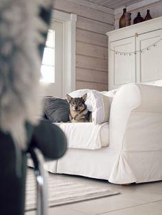 swedish vallhund, göötti, olohuone, log home, white logs, hirsitalo, sisustus, scandinavian, nordic inspiration