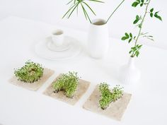 cool Leafling Growing Paper  #Green #Miniature #Seeds #Urban Just add water and watch it grow! LEAFLING is a new plant object consisting of handmade paper with incorporated plant seeds in the shape of letters an...