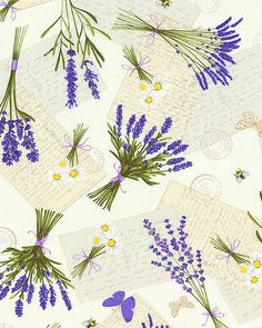 Lavender Garden - Fragrant Flowers - Quilt Fabrics from www.eQuilter.com