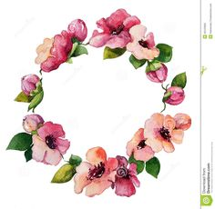 Hand Painted Watercolor Wreath. - Download From Over 46 Million High Quality Stock Photos, Images, Vectors. Sign up for FREE today. Image: 45443660