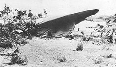 UFO Crash Site, Roswell, New Mexico,