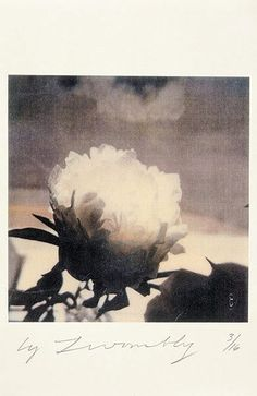 cb — paintedout: Cy Twombly