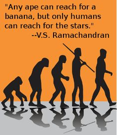 Quote by V. S. Ramachandran
