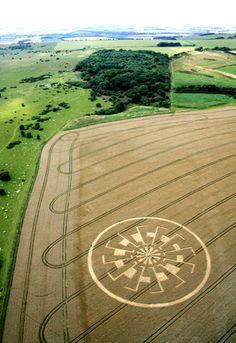 Crop circle - possibly a temari design?