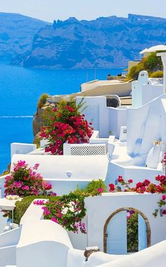 Dreamy whitewashed towns rising from the azure sea. Sunsets over the domes of Santorini. Sunrise parties in Mykonos. It's easy to see why the Greek Islands have held traveler's imaginations for centuries. Rachel Beard lines up the ideal island for every t Island Hopping Greece, Greece Islands, Mykonos Grecia, Oia Santorini, Santorini Island, The Places Youll Go, Places To Go, Greek Islands Vacation, Thasos