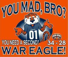 2013 Iron Bowl - Auburn Tigers