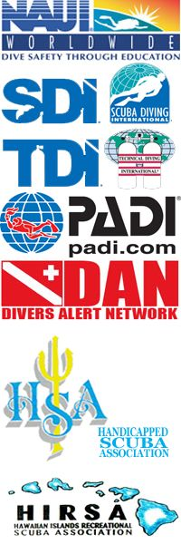 NAUI Dive Tables 1) TABLE 1: End of Dive Lettergroup 2) TABLE 2 ...
