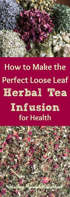 "How to Make an Herbal Tea Infusion: Loose Leaf Herbal Tea for the Beginner One of the most commonly asked questions I get as an herbalist is, ""How do you use loose leaf herb tea? How do you make the tea?"" If you are new to preparing loose leaf teas,[. Kombucha Tee, Tea Recipes, Healthy Recipes, Detox Recipes, Detox Tea Diet, Detox Drinks, Liver Detox, Homemade Tea, Herbs"
