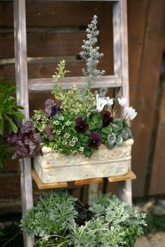 19 Most Beautiful Garden Pots Blend Design And Sustainability Mosaic Flower Pots, Ceramic Flower Pots, Container Plants, Container Gardening, Evergreen Container, Most Beautiful Gardens, Small Garden Design, Small Gardens, Outdoor Gardens