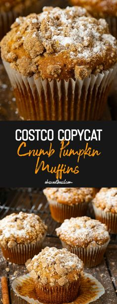 A sweetly soft pumpkin muffin full of just enough spice and a delicious streusel crumb all over the top. It's a Costco Copycat Crumb Pumpkin Muffins kind of day! copycat recipe Costco Copycat Crumb Pumpkin Muffins - Oh Sweet Basil Best Pumpkin Muffins, Pumpkin Muffin Recipes, Pumpkin Chocolate Chip Muffins, Vegan Pumpkin, Pumpkin Pumpkin, Healthy Pumpkin, Pumpkin Foods, Purple Pumpkin, Pumpkin Cookies