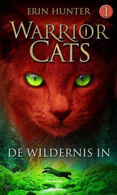 Ik ben dit boek gaan lezen omdat het me een leuk boek leek, en dat vind ik nu nog steeds na 4 series.