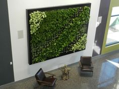 Bring your space to life with our living green wall systems. Reliable and beautiful, our vertical plant walls create a productive & effective space for people. Cool Restaurant Design, Vertical Plant Wall, Living Green Wall, Living Room, Crop Protection, Visual Comfort, House Goals, Creative Design, Indoor