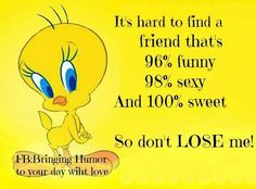 Its hard to find a friend who funny quotes friendship quote friend friendship quote friendship quotes humor Sarcastic Quotes, True Quotes, Story Quotes, Funny Animal Quotes, Funny Quotes, Cartoon Quotes, Tweety Bird Quotes, Favorite Quotes, Best Quotes