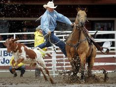 Clif Cooper leaps off his horse while chasing a calf during the tie-down roping competition at the Calgary Stampede in Alberta, Canada. The 10-day event, drawing over one million visitors, is Canada's largest annual rodeo and is billed as the 'Greatest Outdoor Show on Earth'