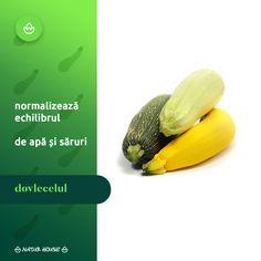 Natur House, Fruit, Healthy, Food, Tips, Essen, Meals, Health, Yemek