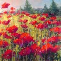 Knee Deep in Poppies by Jennifer Bowman