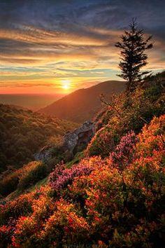 Mountain Sunset, Chaîne des Puys, France