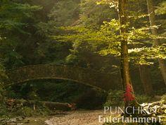 #oldmanscave #ohio #naturephotography #forest #punchkin #hiking #punchkinentertainment #nofilter #naturalsunlight