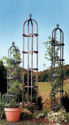 Narrow, steel cut obelisk shaped trellis features can be placed in an amazing variety of places, and in many different types of garden and landscape arrays. Excellent choices for both traditional and modern displays, there is no end to the ways you can take advantage of this classic look.