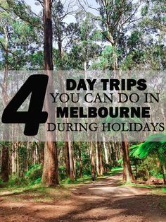 4 Day Trips you can do in Melbourne during Holidays New Environment, You Can Do, Day Trips, Melbourne, Holidays, Canning, Travel, Life, Holidays Events