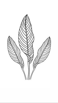Minimalist line art created for the perfect wall art piece. Download, Print and Hang. Easy printable wall art for the perfect gift.  #minimalist #wallart #lineart #flowerwallart #linedrawing #goddess #printable #digitaldownload #homedecor #poster #illustration #minimal #drawing #printable #gift Fleurs Diy, Flower Sketches, Flower Doodles, Plant Illustration, Easy Drawings, Minimal Drawings, Leaf Art, Minimalist Art, Botanical Prints