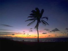 tropical_sunset