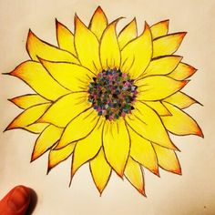 Only drawing keeps me company in the early hours.  #sunflower