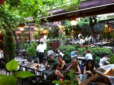 Viktor Levi: The place to go for drinking wine